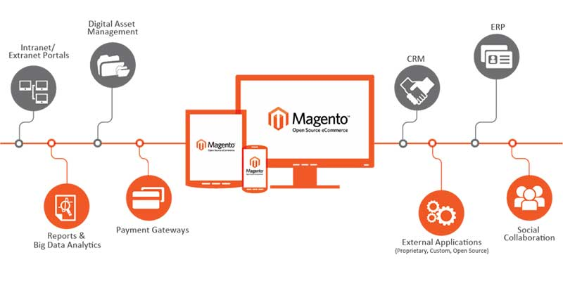 Choosing Right Magento Platform For online store