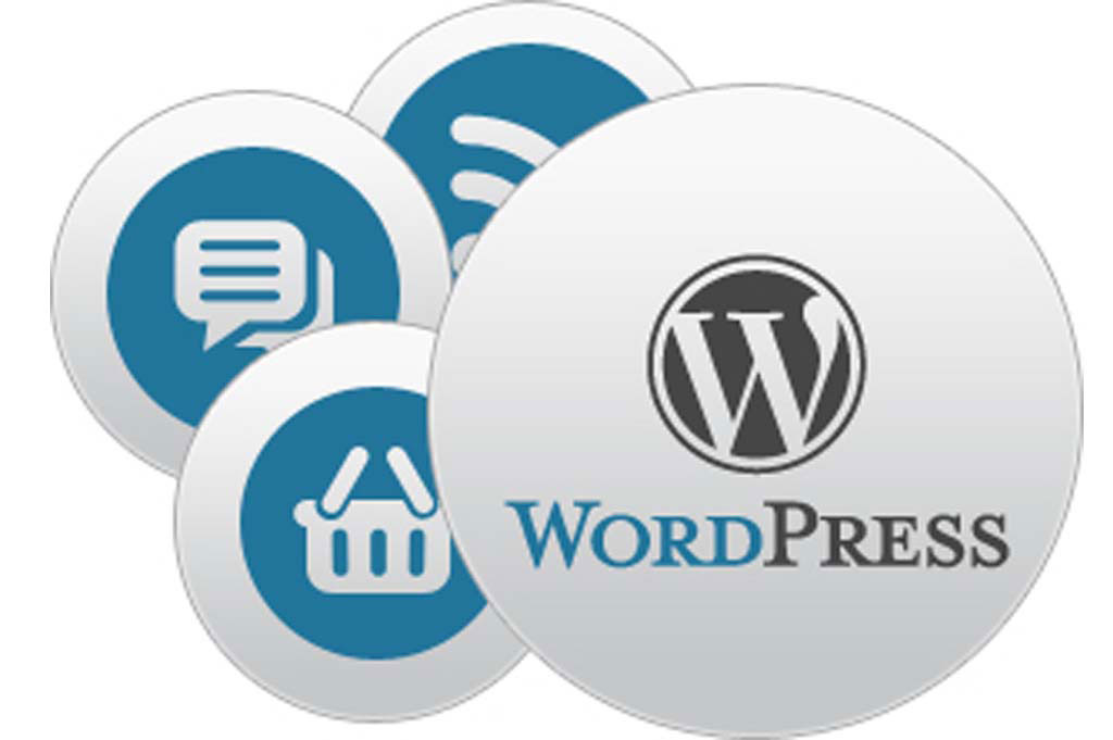 WordPress Web Design Company Guide: 6 Things You Need To Know