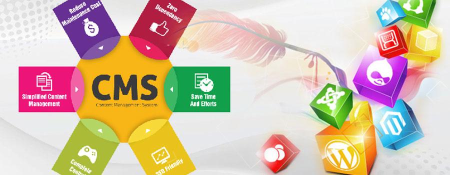CMS web development | C Factory