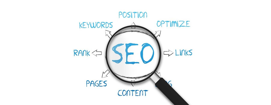SEO business | C Factory